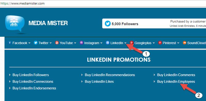 Buy Linkedin Employees Sub Menu