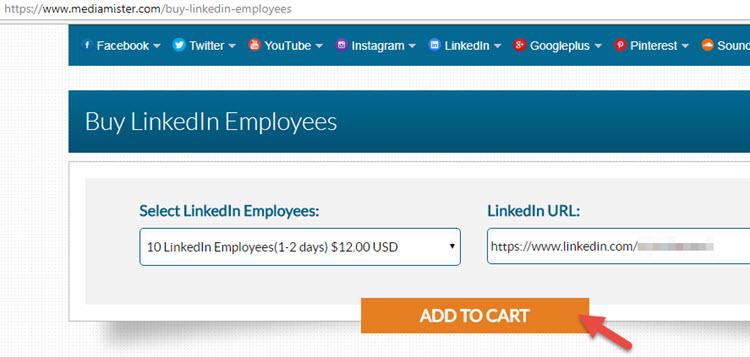 Buy linkedin employees add to cart