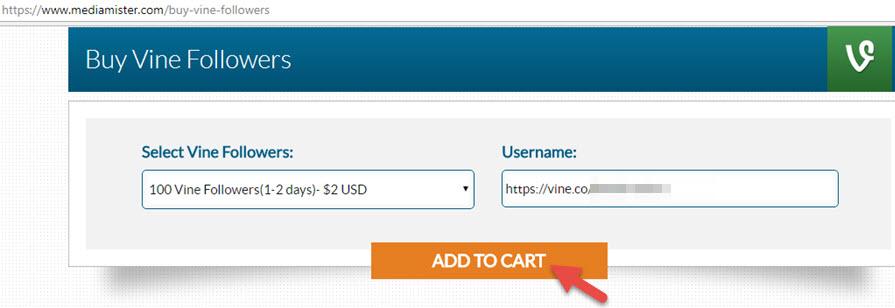 Buy Vine Followers Add To Cart