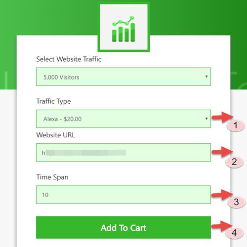 Buy Website Traffic - Step 3