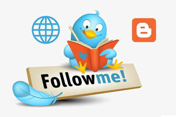 Add a follow button on your website or blog